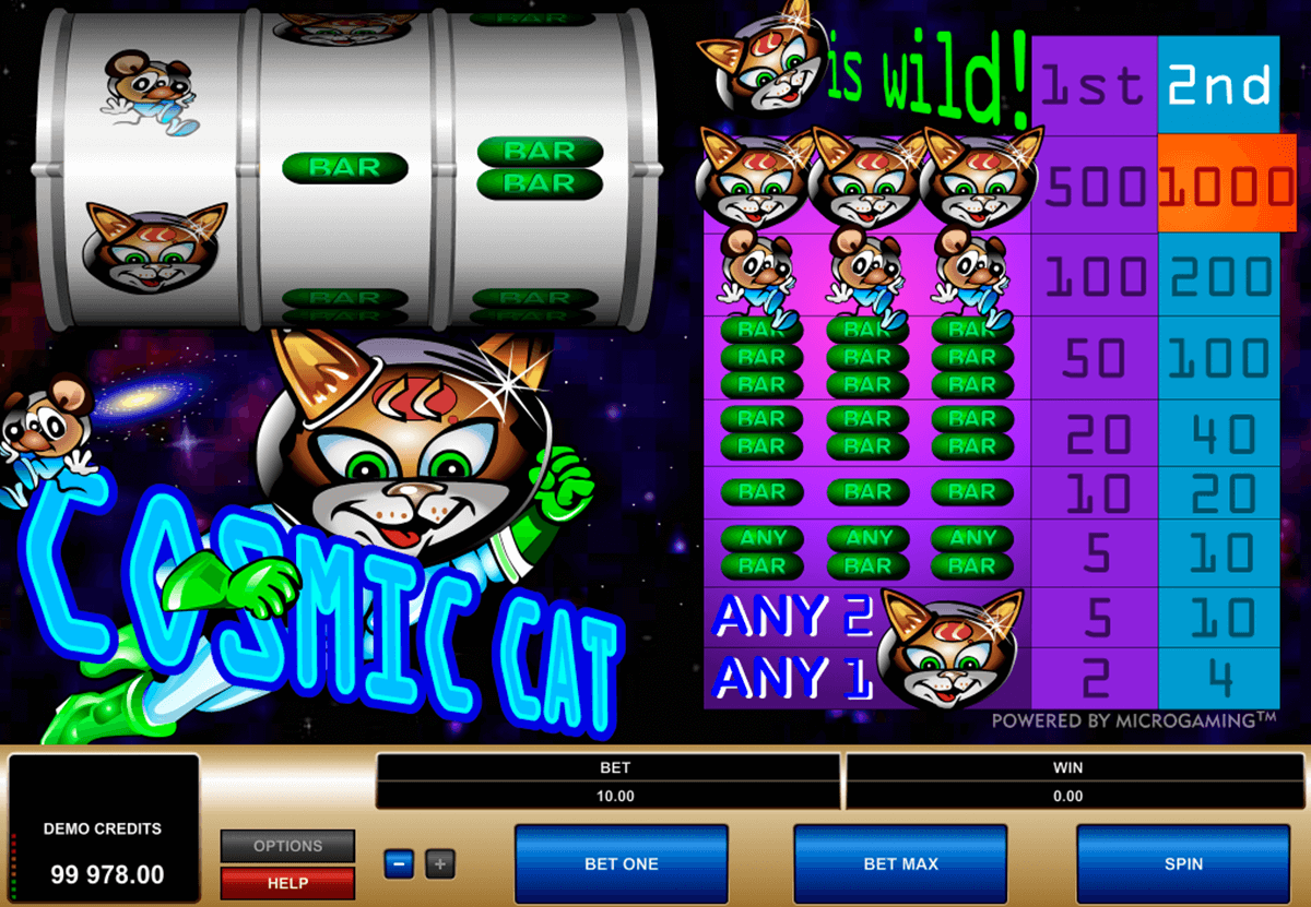 cosmic cat microgaming automat pa nett