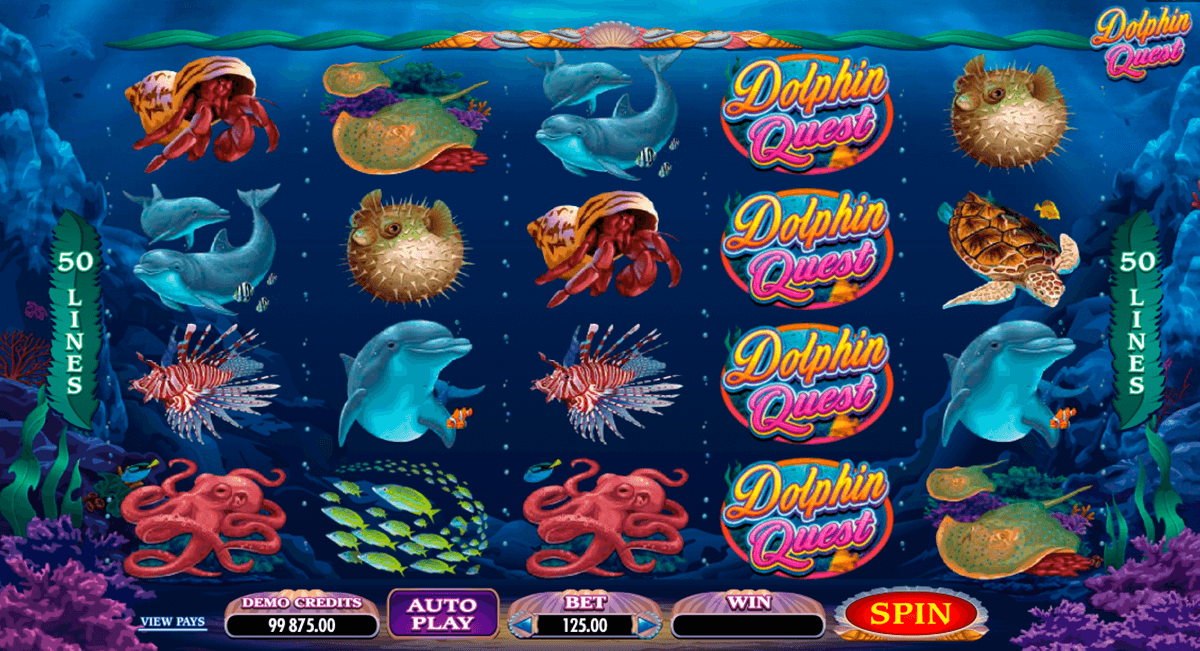 dolphin quest microgaming automat pa nett