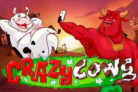 logo crazy cows playn go spilleautomat