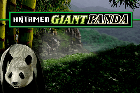 logo untamed giant panda microgaming spilleautomat