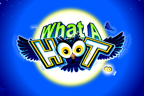 logo what a hoot microgaming spilleautomat