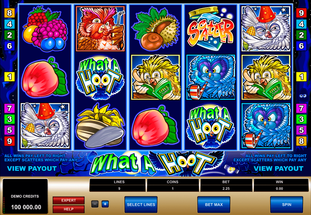 what a hoot microgaming automat pa nett